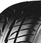 Seiberling Performance 205/55R16 91 W(286792)