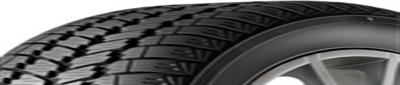 MasterSteel WinterPlus 3 205/55R16 91 H